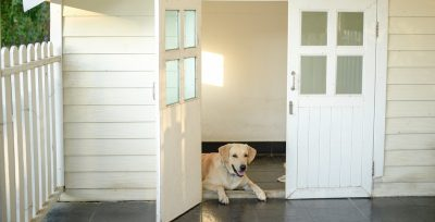 Three Ways To Ensure That Your Dog House Flooring Is Safe